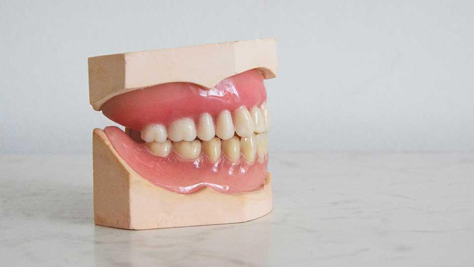 The Best Ways to Encourage Gum Health